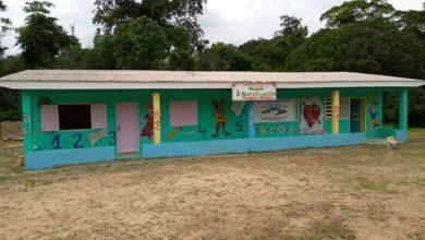 Photo de Inauguration d'une école pré-primaire communautaire à Kouagna-Ndongou, l'arbre qui cache la forêt