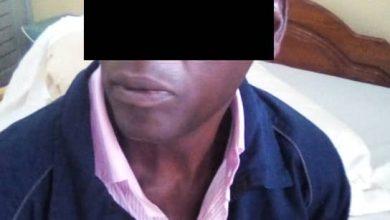 Photo de Trafic d'ivoire / Oyem : 5 pointes saisies par les agents de la Direction Générale des Recherches (DGR)