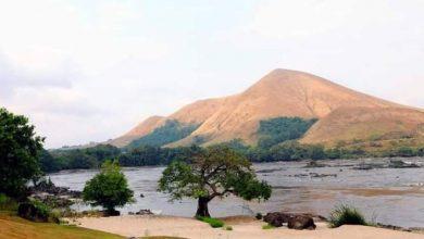 Photo de Gabon – Tourisme : Le Parc national Lopé-Akanda réserve un accueil chaleureux aux touristes du monde